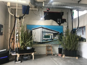 Installation view at MassMoCA open studios.